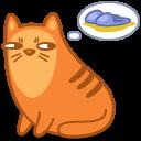 cat_slippers